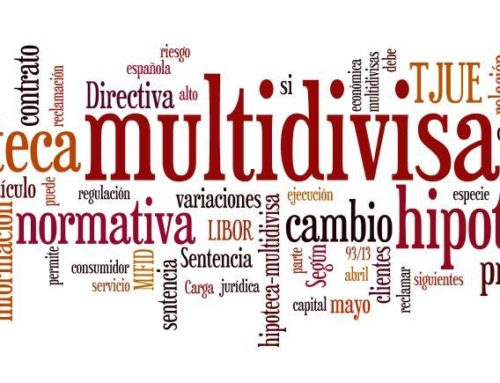 EXPERTS EN HIPOTEQUES MULTIDIVISA