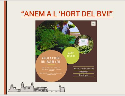 """PDF""""JUNTS PER MILLORAR LA COHESIÓ DE LA NOSTRA COMUNITAT: ANEM A L'HORT DEL BARRI VELL!!""""27/07/2021"""